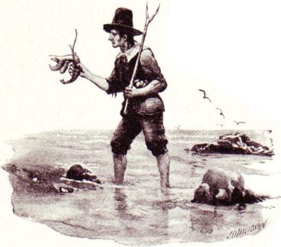 Plymouth Settler
